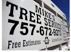 Norfolk Tree Service