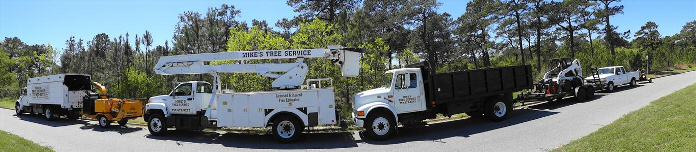 About Mikes Tree Service