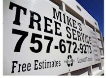 Tree Removal Virginia Beach
